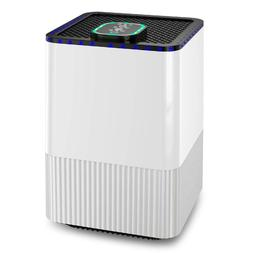 Air Purifier 4 in 1 True HEPA Filter and Ionizer, Odor Aller