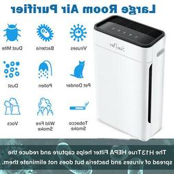 Air Purifier True HEPA Filter Filtration System Cleaner Odor