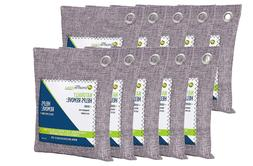 BREATHE GREEN BAMBOO CHARCOAL AIR PURIFYING BAG 10 PACK MOLD