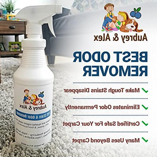 Best Pet Stain Amp Odor Remover Industrial