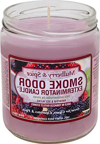 Odor Exterminator Candle Mulberry and Spice 13oz by Smokers