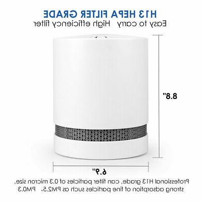 Large Room Air Purifier True Allergies