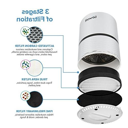 LEVOIT Air for True HEPA Filter, Allergies Eliminator for Dust, Mold, Pets, with Light, US-120V, 2 Pack, Warranty